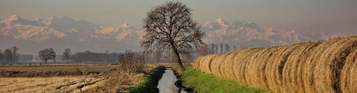 I paesaggi agricoli