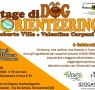 Stage di dog orienteering