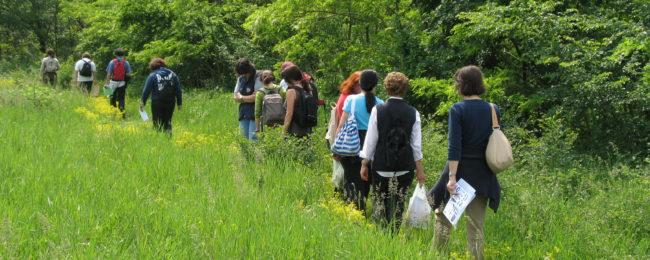 Camminata alla scoperta della diga della Paladella, dell'isola del Turbigaccio, del bosco del Ticinetto