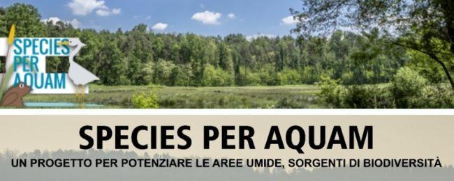Progetto Cariplo Species per Aquam – incontro pubblico