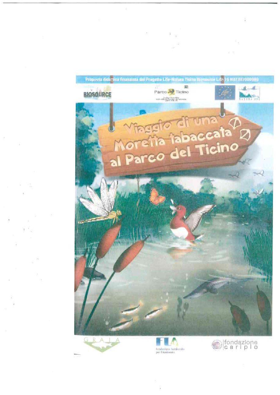 Viaggio di una Moretta tabaccata al Parco del Ticino…