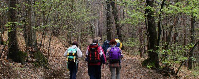 Corso di formazione per guide naturalistiche e primo soccorso out door CRI