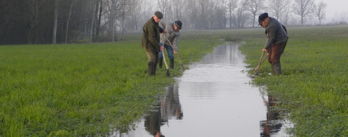 * Agricoltura, collettività e clima – Il Piano d'Area Biodistretto dei Navigli – 20 febbraio 2020