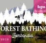 Bagno di bosco
