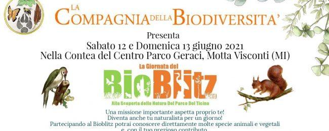 La compagnia della biodiversità: giornata del bioblitz